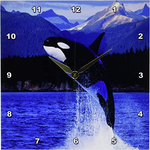 3dRose DPP_80247_1 Breeching Whale Off Alaska Coast Wall Clock, 10 by 10-Inch