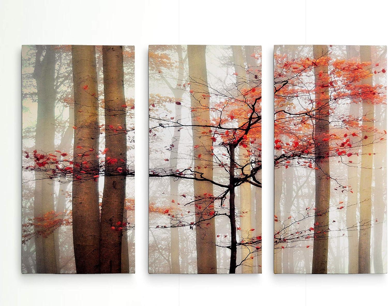Renditions Gallery Orange Awakening 3 Panel Wall Art for Home, Office, Bedroom 40X60