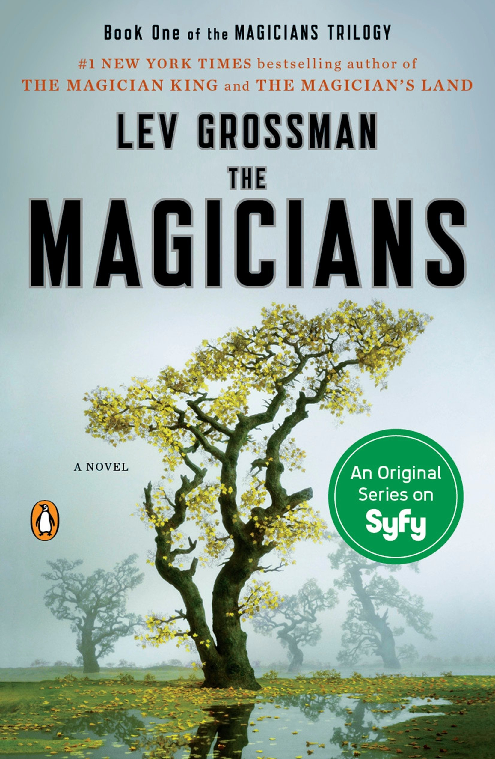 Image result for The Magicians - Lev Grossman