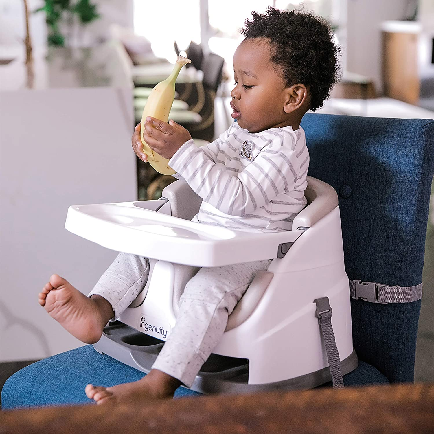 Baby Base 2-in-1 Si/ège Rehausseur pour Table Ingenuity Paon Bleu