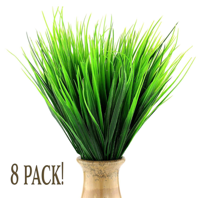 amazon com grasses plants seeds u0026 bulbs patio lawn u0026 garden
