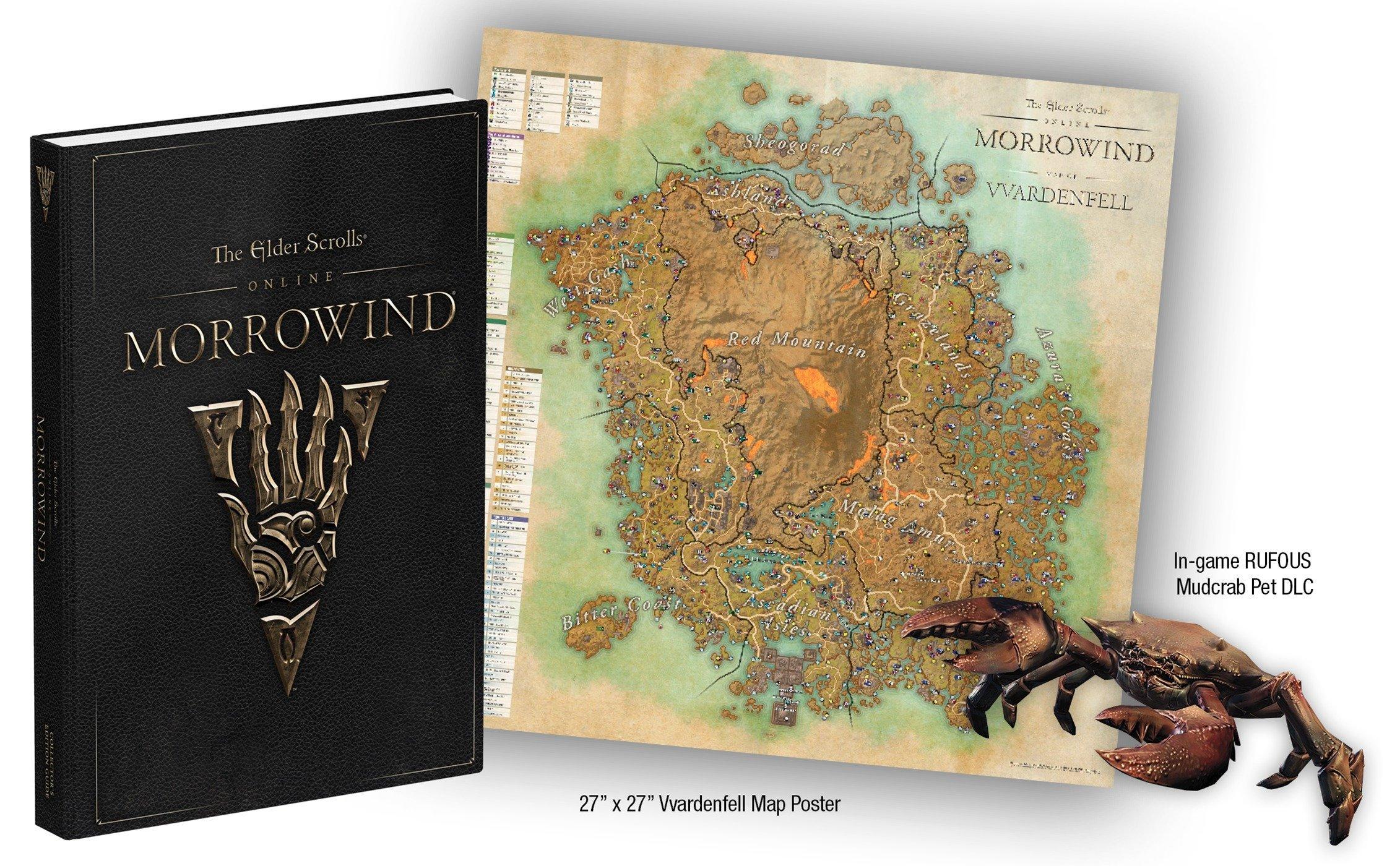 The Elder Scrolls Online: Morrowind: Prima Collector's Edition Guide: David  Hodgson, Michael Owen: 9780744018257: Amazon.com: Books