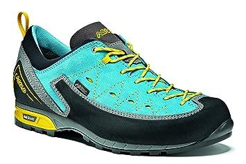 8b429884a0b06 Asolo Apex GV ML Mountain Shoe, Women, Women, A12029A652, Donkey ...