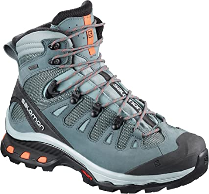 SALOMON Quest 4d 2 GTX W, Chaussures de Randonnée Hautes