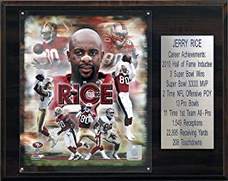 product image for NFL Jerry Rice San Francisco 49ers Career Stat Plaque