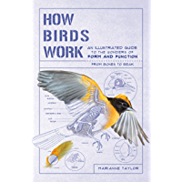 How Birds Work: An Illustrated Guide to the Wonders of Form and Function—from Bones to Beak