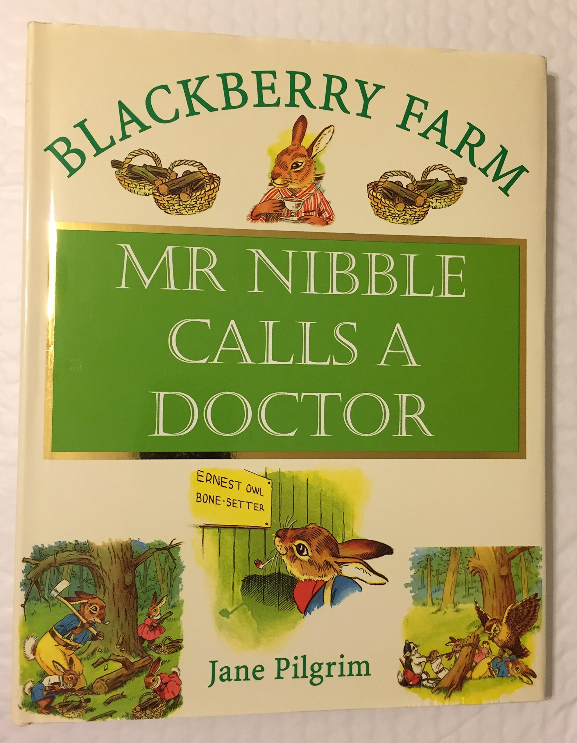 Mr. Nibble Calls a Doctor (Blackberry Farm) pdf epub