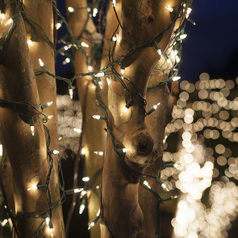 100 Clear Mini Christmas Lights, 6\