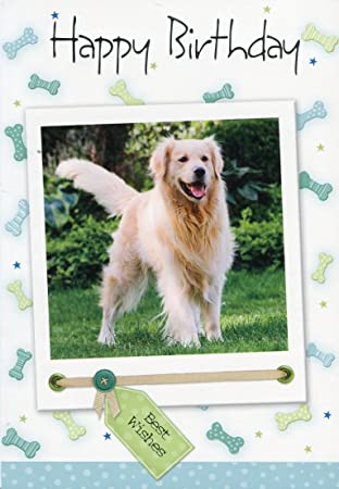 Birthday Card For Your Dog Birthday Card For Your Pet Best Friend