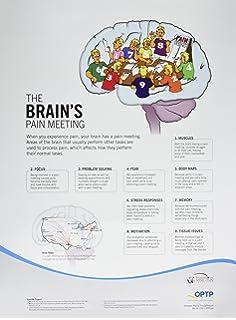 Therapeutic neuroscience education 8748 9780985718640 medicine pain neuroscience posters 876set fandeluxe Gallery