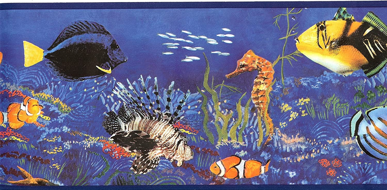 Wt1035b Sea Life Fish Kids Wallpaper Border Amazon Com