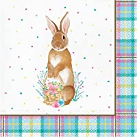 Easter Plaid Napkins, 48 ct