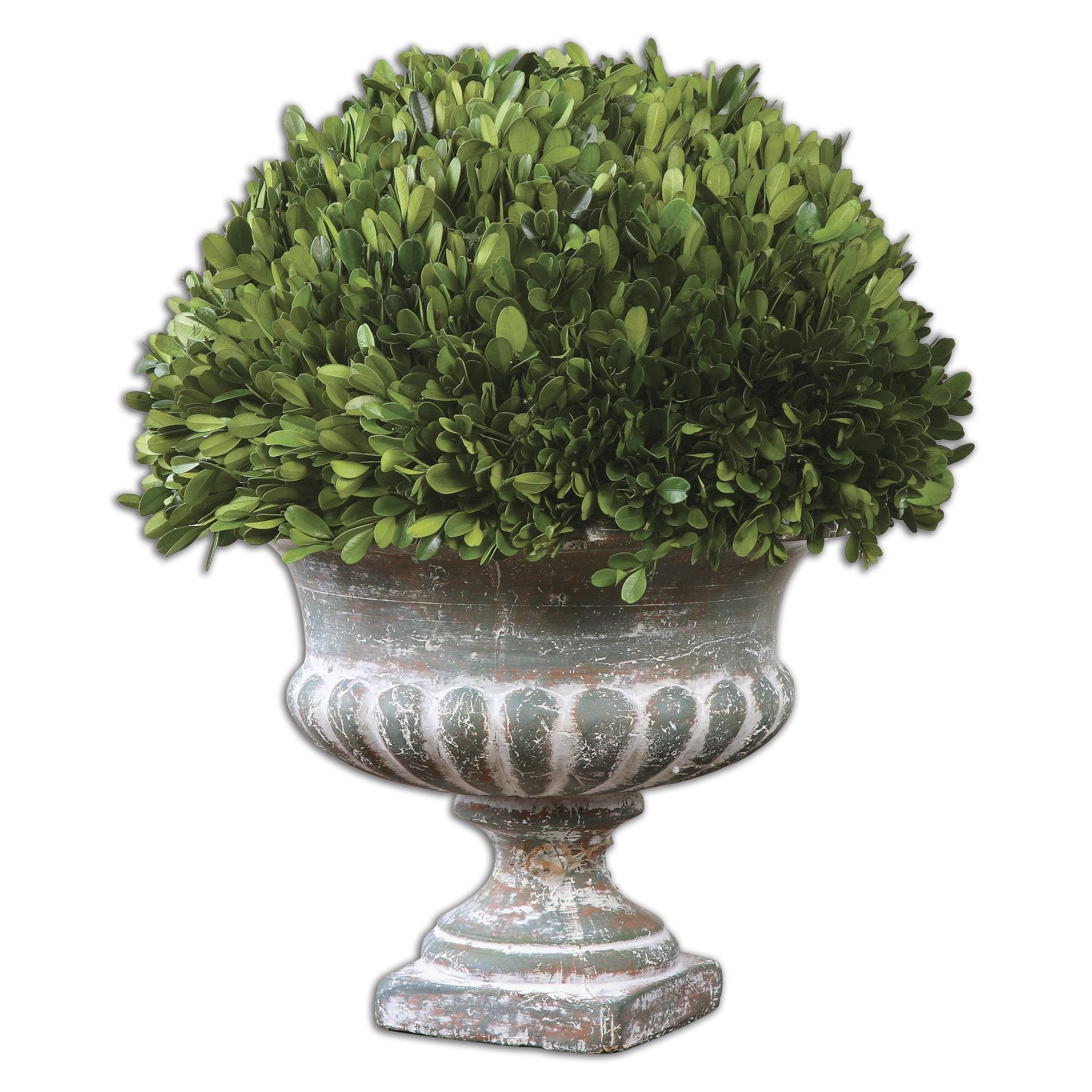 Uttermost Preserved Boxwood Garden Urn with Natural Foliage That Is Picked From Real Boxwood Plants by UTMOST MFG (Image #1)