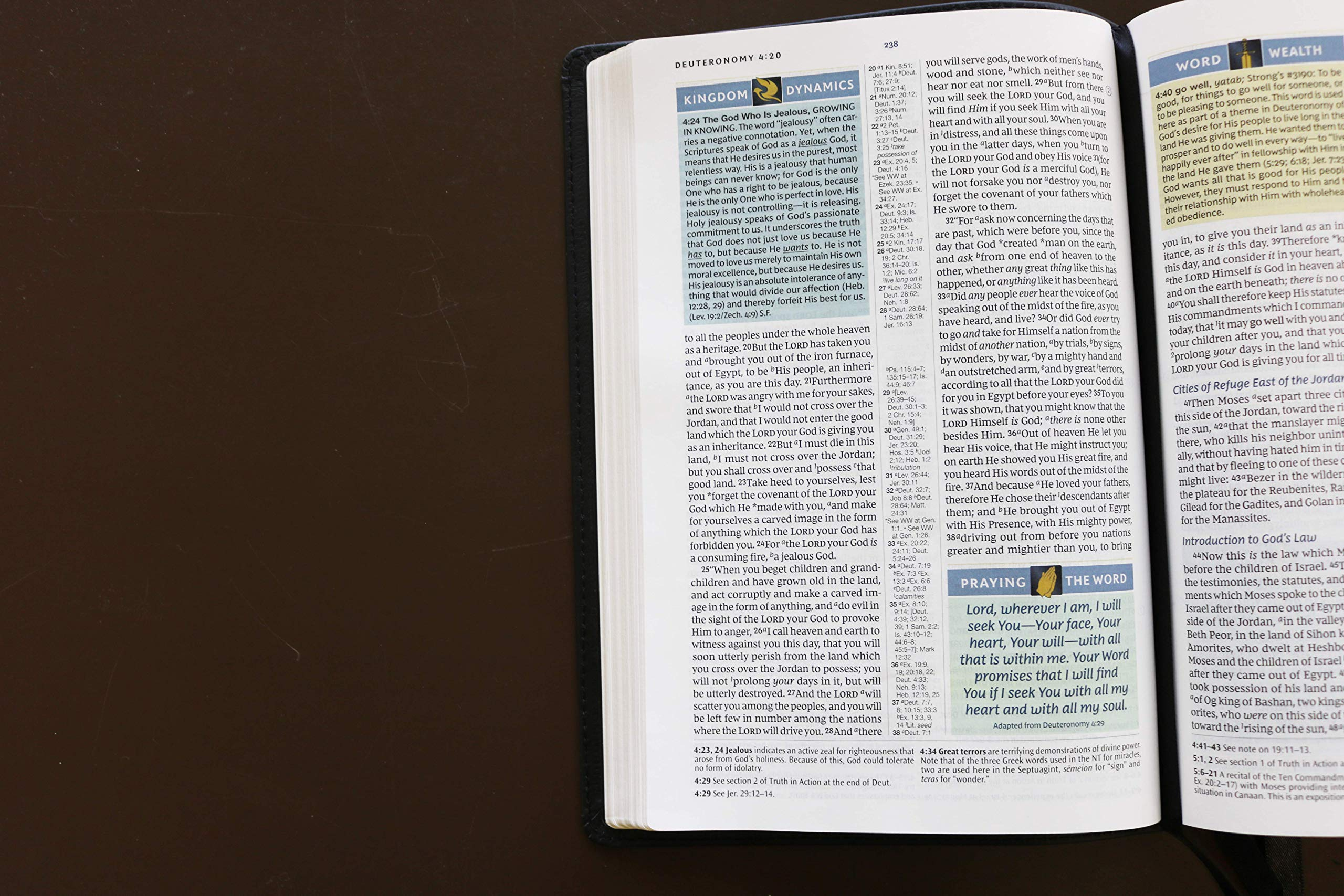 NKJV, Spirit-Filled Life Bible, Third Edition, Genuine Leather