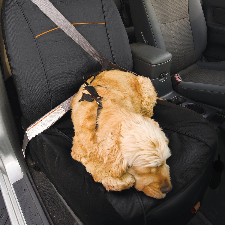 Noir Taille unique 01189 Imperm/éable et anti-d/échirure CoPilot Bucket Seat Cover Kurgo Housse de si/ège passager pour chien Adapt/é /à la plupart des v/éhicules