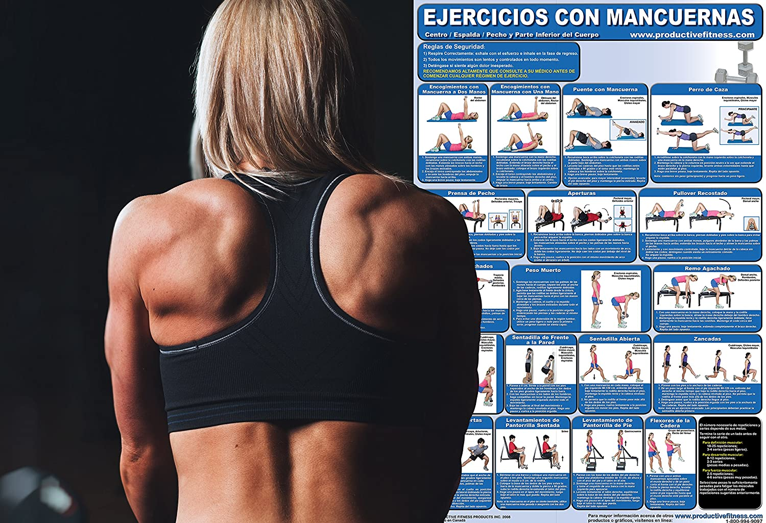 Amazon.com : Ejercicios con Mancuernas - Centro/Espalda/pecho y parte inferior del Cuerpo - Cartel - Dumbbell Exercises-Lower Body/Core/Chest and Back ...