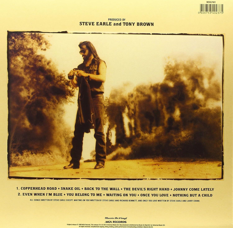 Buy Copperhead Road Vinyl Online At Low Prices In India Amazon