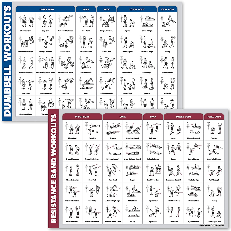 Kurzhantel/übung /& Widerstandsr/öhren Workouts QuickFit Hanteltraining und Widerstandsb/änder /Übungsposter-Set laminiertes 2 Diagramm-Set