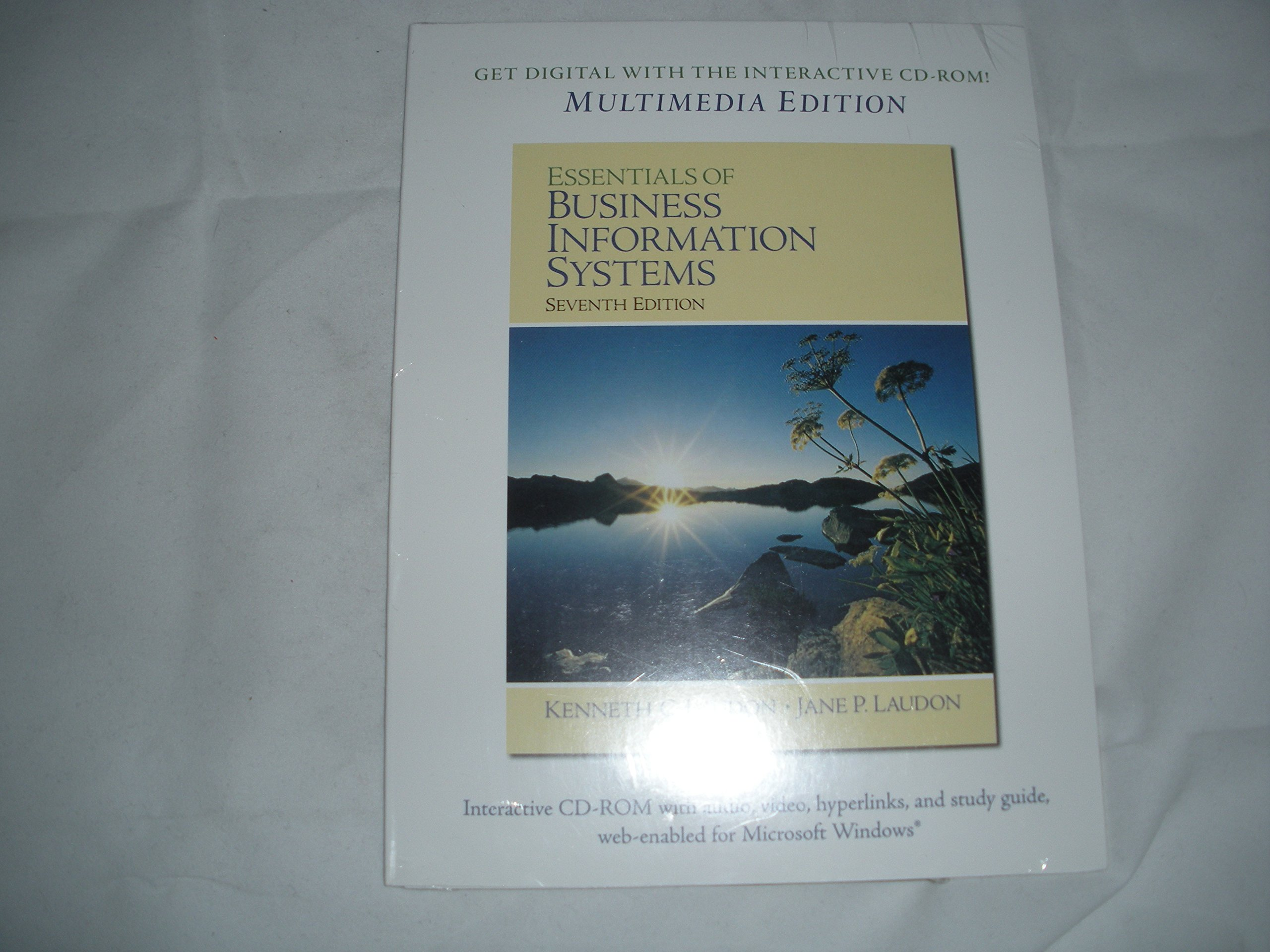Essentials of Business Information Systems PDF