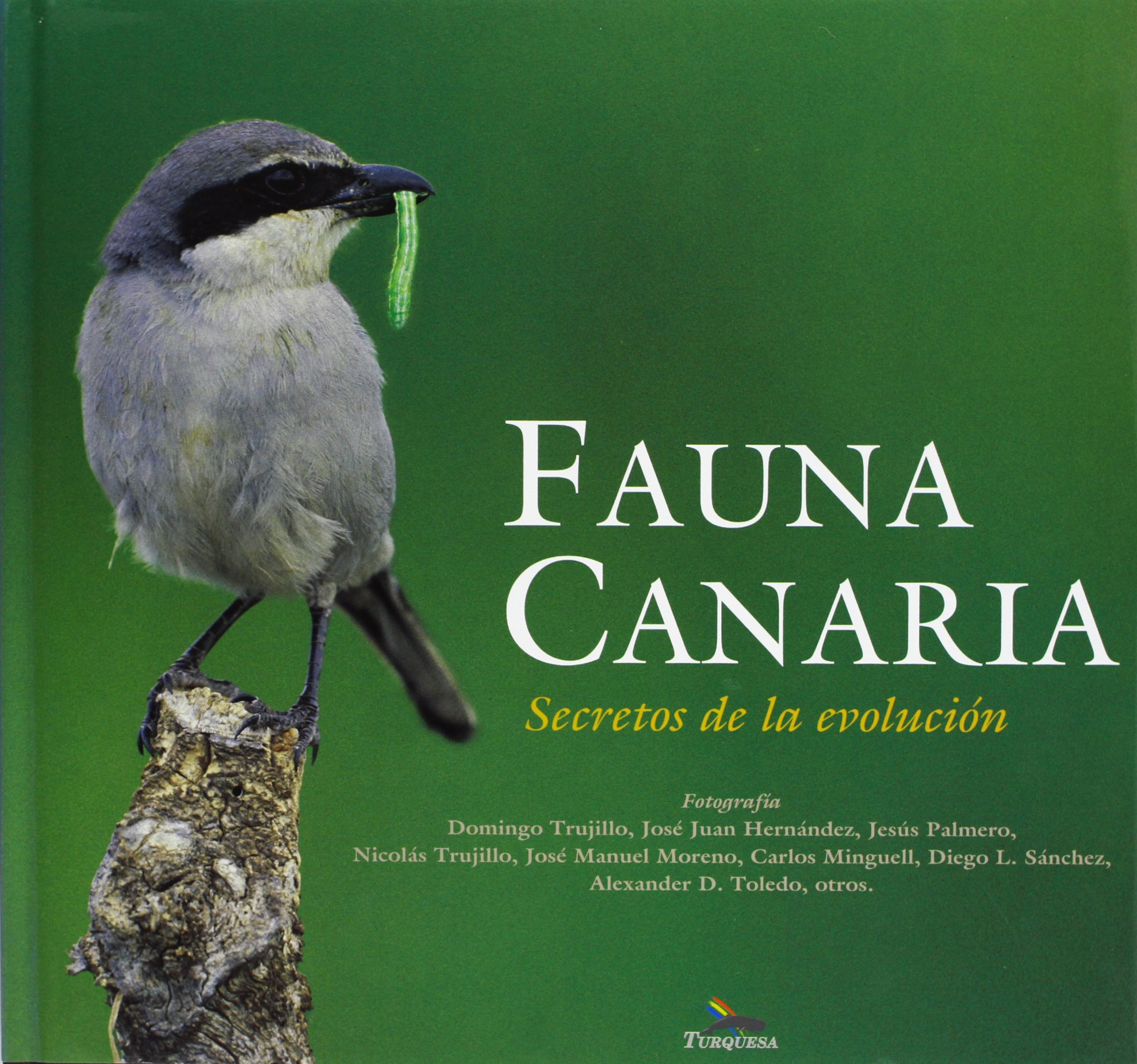 Download Fauna Canaria: Secretos De La Evolucion ebook