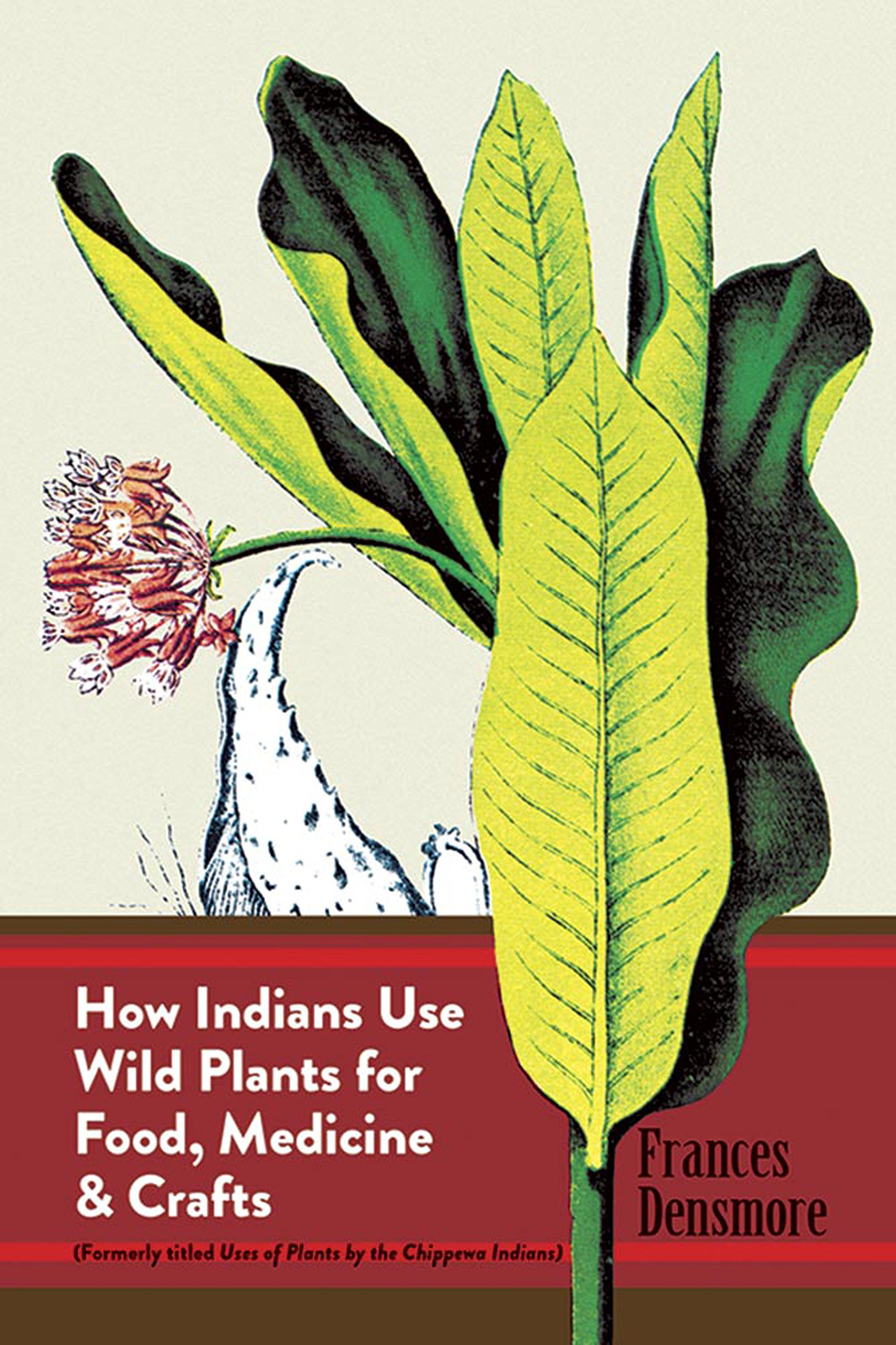 How Indians Use Wild Plants for Food, Medicine & Crafts (Native American (Paperback))