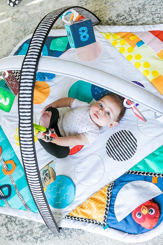 Baby Einstein Sensory Play Space Newborn-to-Toddler Discovery Gym