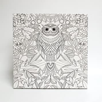 Johanna Basford Secret Garden Colouring Canvas Owl