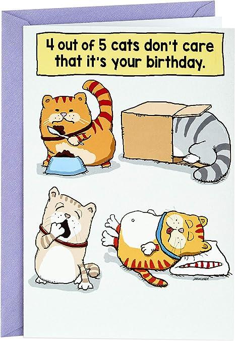 Amazon.com: Hallmark - Tarjeta de felicitación de cumpleaños ...