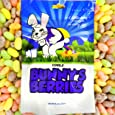 Easter Bunny's Berries Poop Candy (Pastel Jelly Beans) - Funny Easter Candy - Unique Gag Gift (1 Pack)