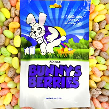 Easter Bunnys Berries Poop Candy Pastel Jelly Beans Funny Easter Candy Unique
