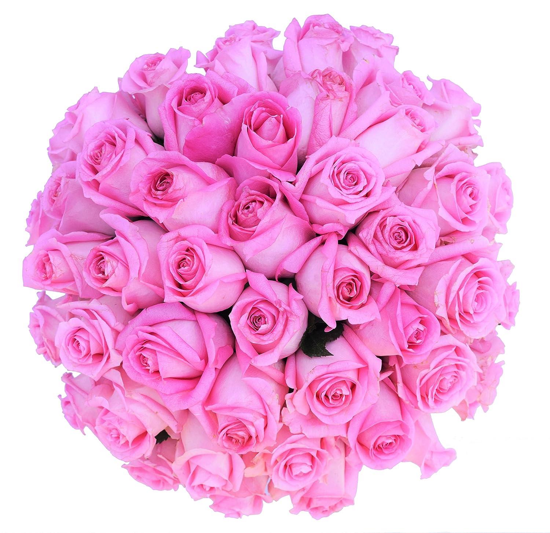 Amazon 50 Farm Fresh Pink Roses Bouquet By Justfreshroses