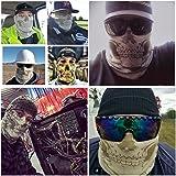 BENCHMARK FR Skully Flame Resistant Face Mask