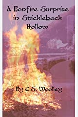 A Bonfire Surprise in Stickleback Hollow: A Cozy Mystery with a dark twist, set in Victorian England (The Mysteries of Stickleback Hollow Book 5) Kindle Edition