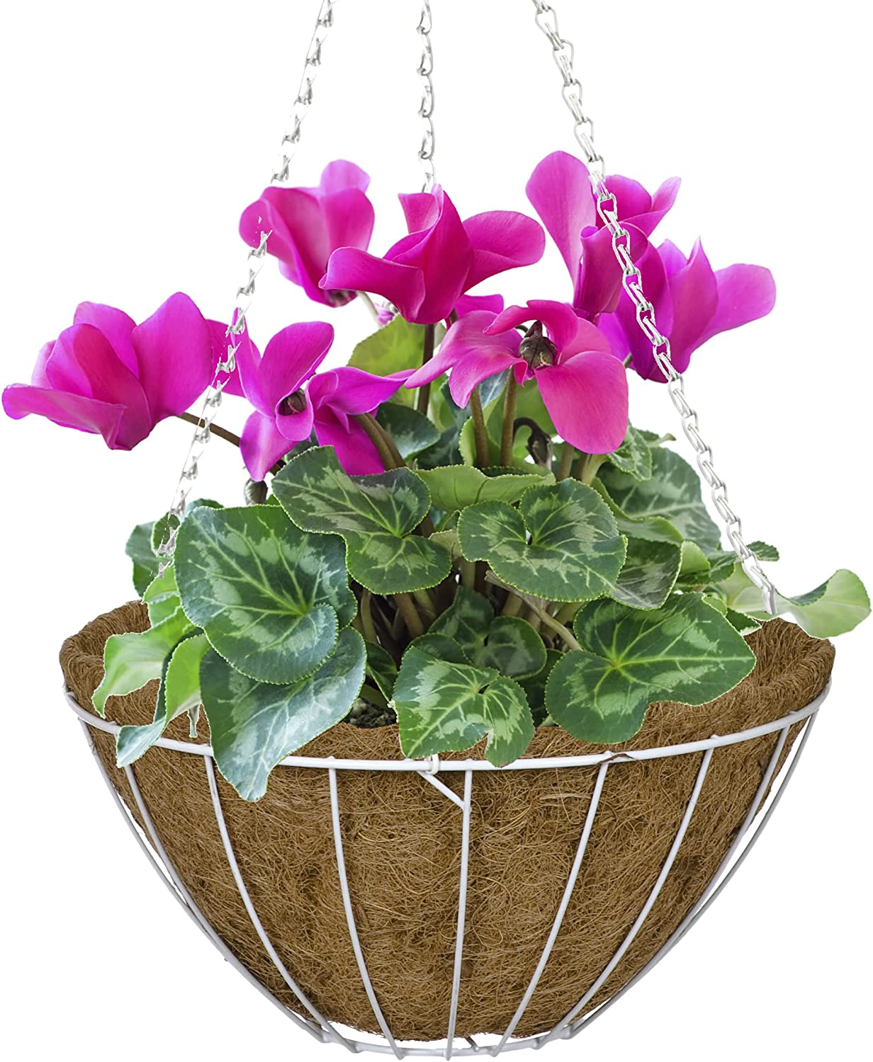 CobraCo White 12-Inch Growers Style Hanging Basket HGB12-W