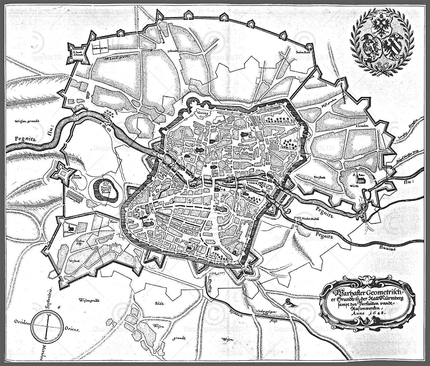 Amazon.com: MAP ANTIQUE MERIAN 1648 NUREMBERG CITY PLAN LARGE ...