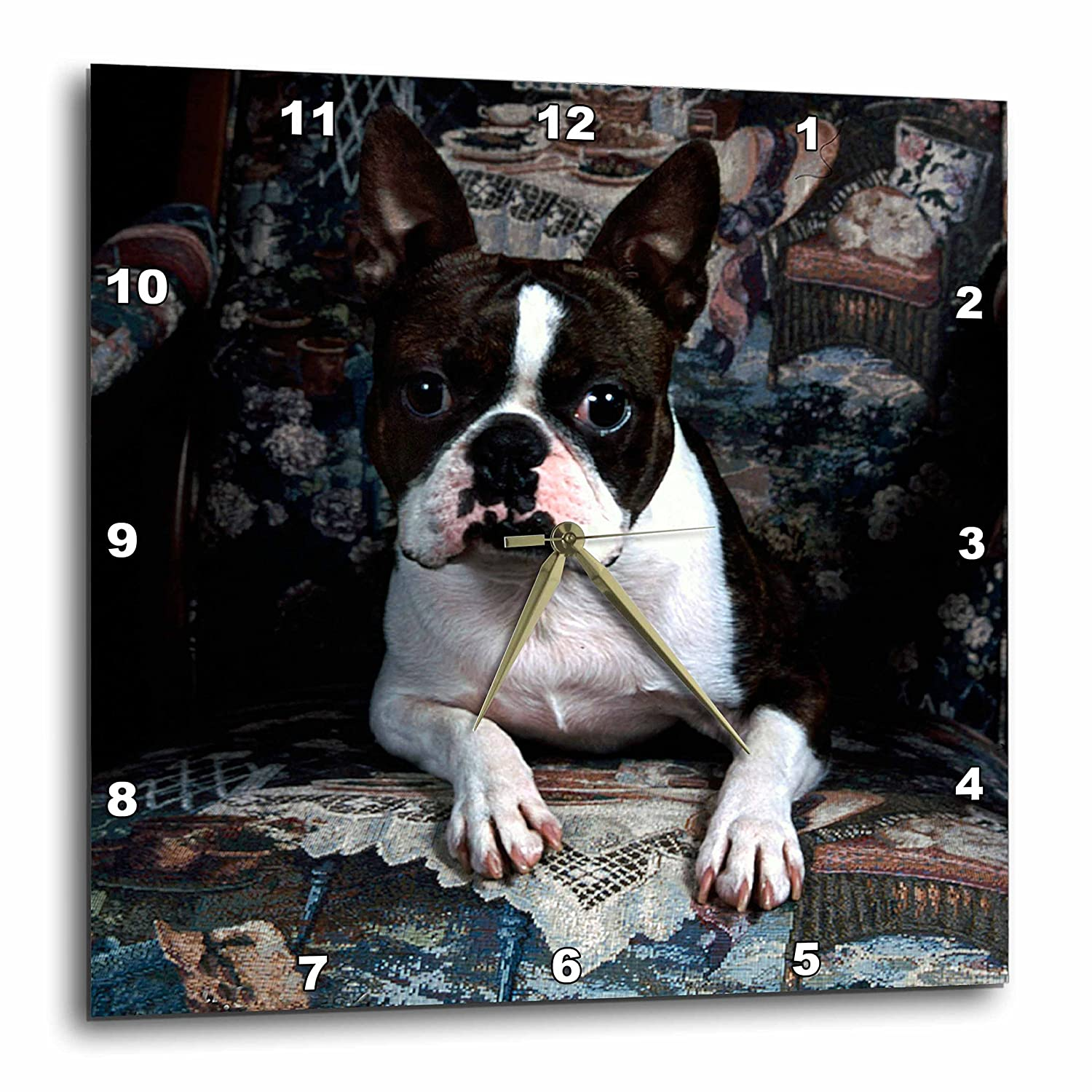 3dRose dpp/_3112/_3 Boston Terrier Philippe Wall Clock 15 by 15-Inch