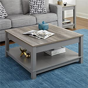 Ameriwood Home Carver Coffee Table, Gray
