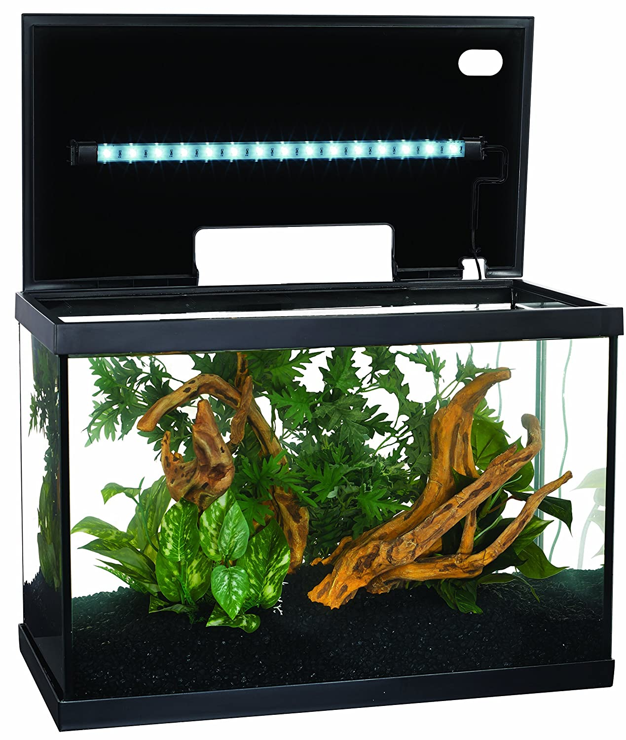 Marina led glass aquarium kit 10 gallon fish tank brand for Fish for a 10 gallon tank