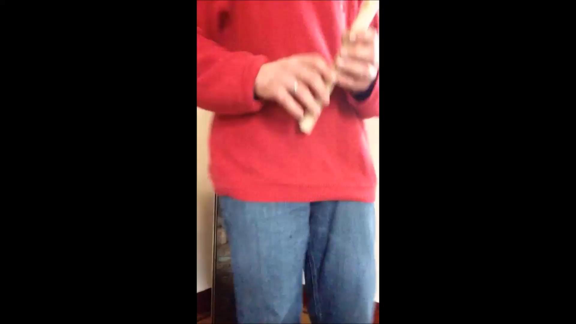 harmony h403i renaissance style c soprano recorder