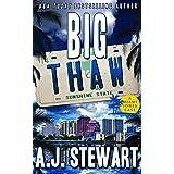 Big Thaw (Miami Jones Florida Mystery Book 14)