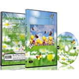 Nature DVD - Butterflies and Flowers with Relaxing Nature Sounds