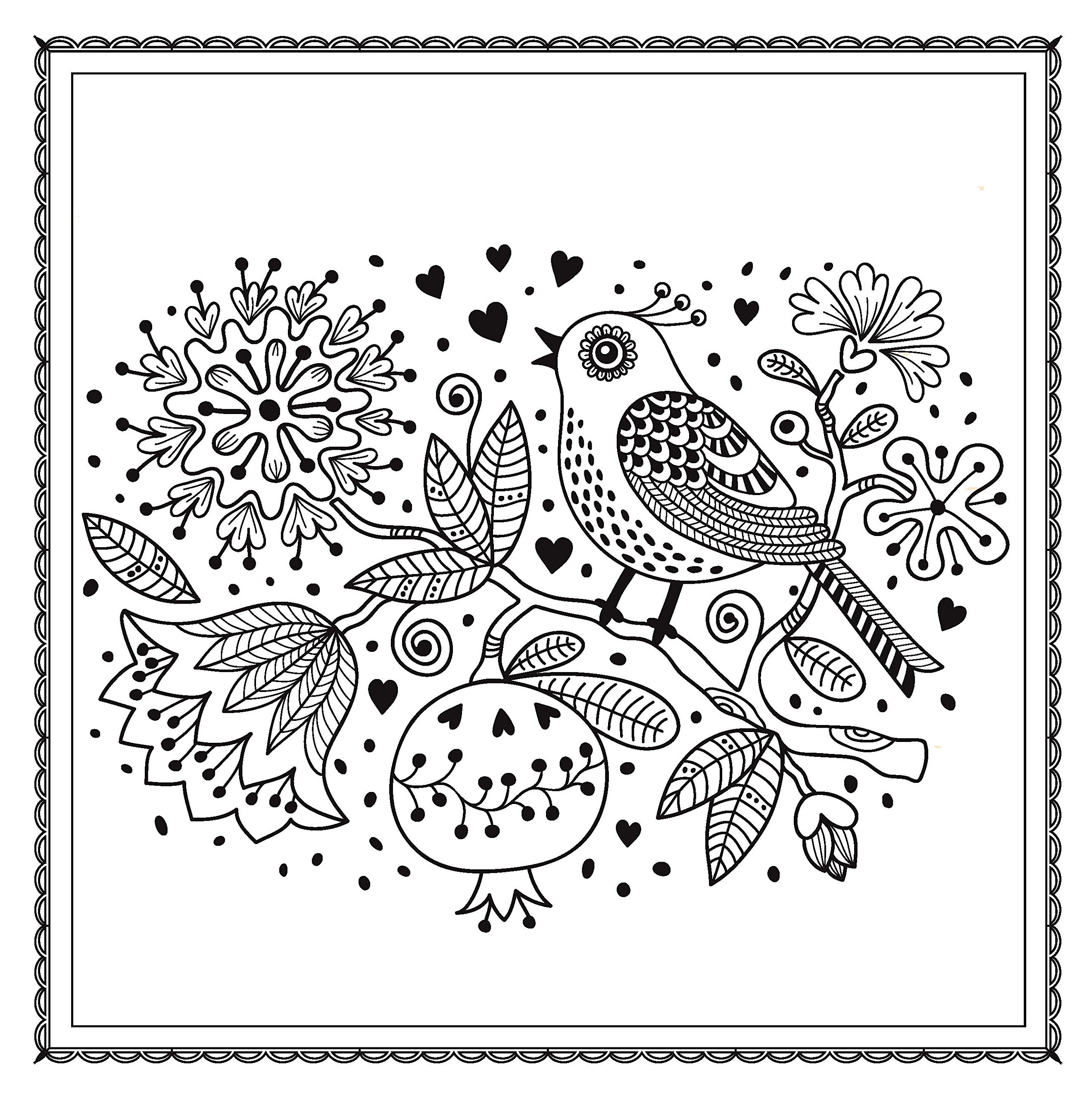 A fun magic coloring book amazon - Amazon Com Blossom Magic Beautiful Floral Patterns Coloring Book For Adults Color Magic 9781438007311 Arsedition Books