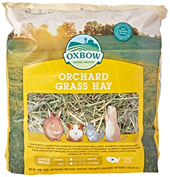 petlife oxbow orchard grass hay for small pet 1 13 kg amazon co uk