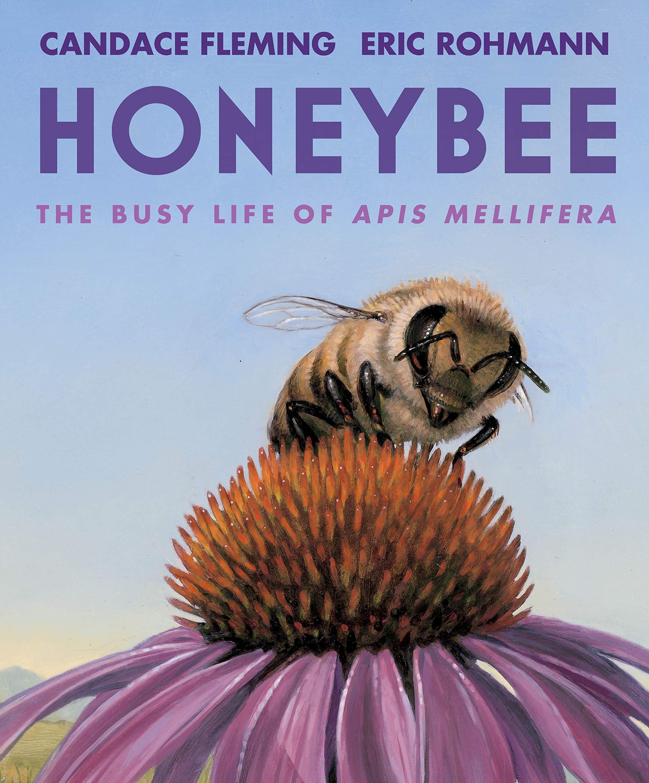 Honeybee: The Busy Life of Apis Mellifera: Fleming, Candace, Rohmann, Eric:  9780823442850: Amazon.com: Books