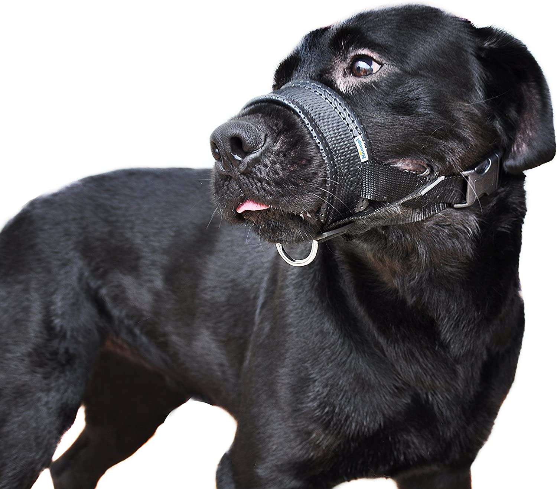 L /& XL Black Niteangel Quick Fit Nylon Dog Muzzle Adjustable Loop
