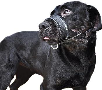 Niteangel Quick Fit Nylon Dog Muzzle
