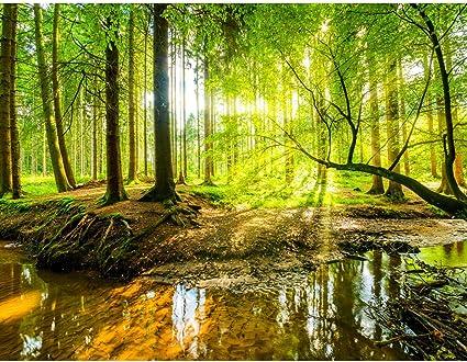 100/% made in Germany Carta da parati moderna Foresta 396 x 280 cm Fotomurale tessuto non tessuto Soggiorno 9141012a
