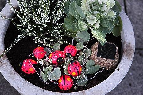 Come illuminare il giardino con il fai da te u mondo zerorelativo