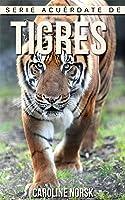 Tigres: Libro De Imágenes Asombrosas Y Datos