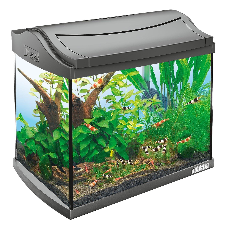 Tetra AquaArt Discovery Line - Set completo de acuario con luz LED, 20 litros, color antracita (incluye luz diurna y nocturna, filtro interior y bomba para ...